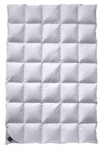 Bettdecke 200x200 - Billerbeck Daunendecke 306 Nena Mono, weiß