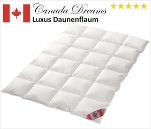Bettdecke 220x240, Canada Dreams Luxus Ganzjahres Daunendecke Wärmegrad 3 Luxus Daunenflaum ☆☆☆☆☆ (220x240 cm)